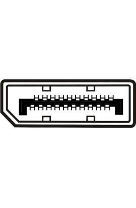 Cable DisplayPort  macho / macho 1,0mts color negro
